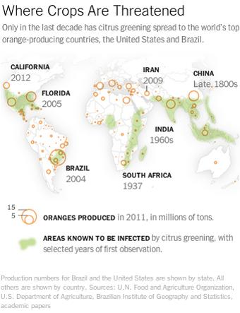 Orange map of Citrus Greening