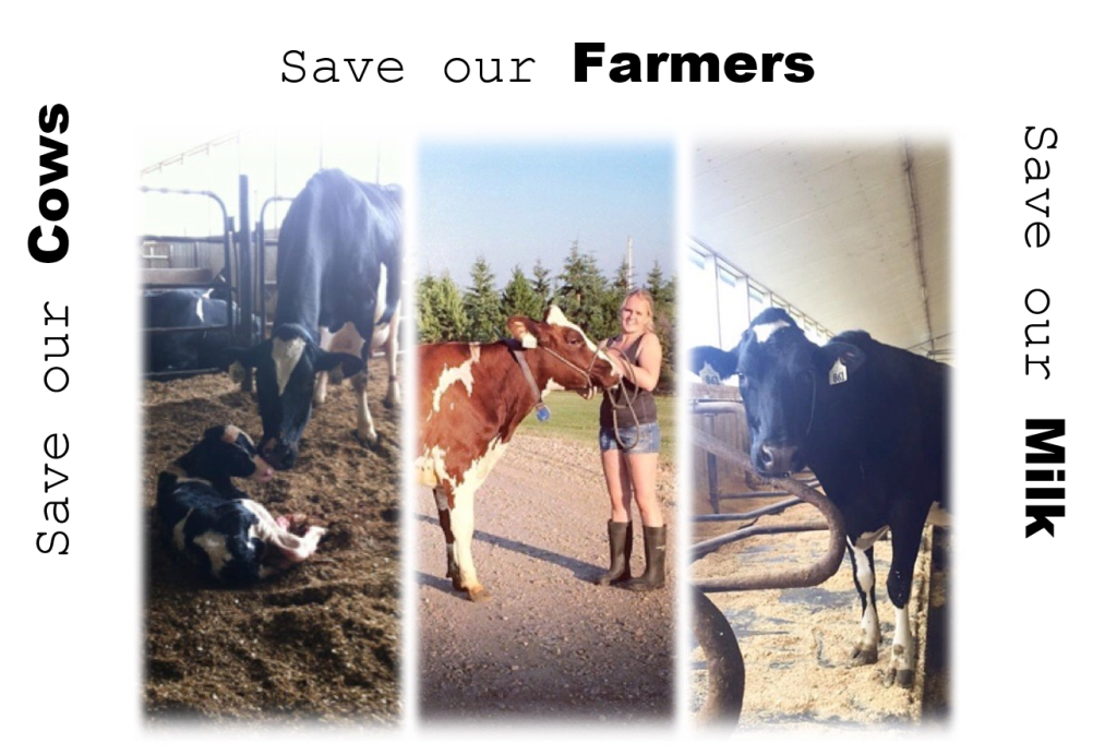 Save our Cows, Farmers and our milk from TPP by Shelby Devet