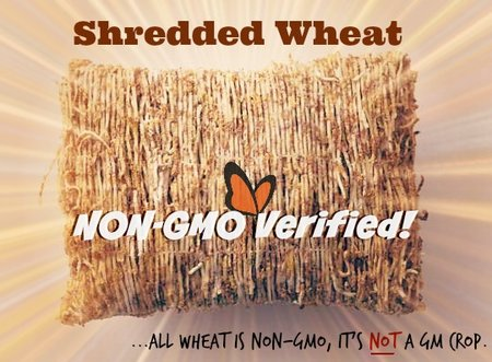 All wheat is non-GMO, so why would you label a product made entirely of wheat non-gmo verified? Consumer deception