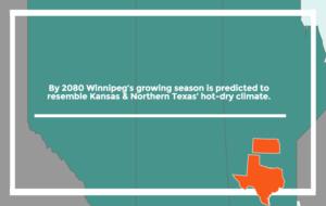 Prairie Climate Change is projected to have summers similar to Texas by 2080