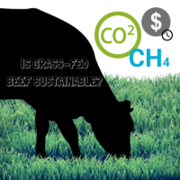 grass fed beef is it sustainable?