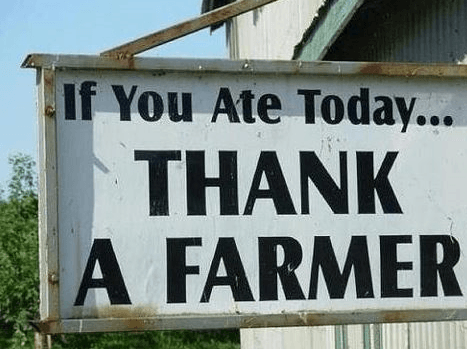 Canadian Agriculture success has led to your food, thank a farmer if you ate today