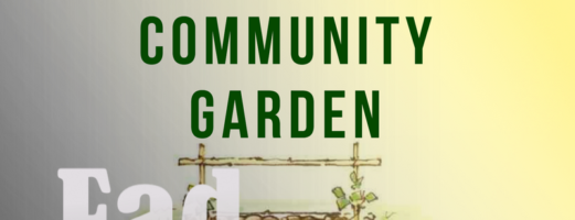 Community Gardens- Fad or Fabulous?