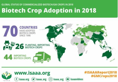 Biotech crop adoption in 2018