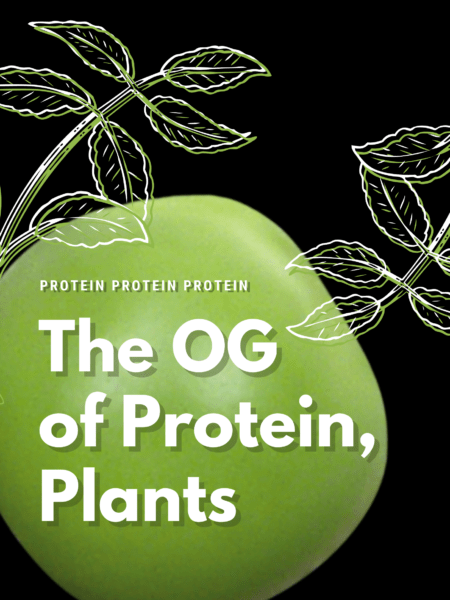 Plant protein is the OG